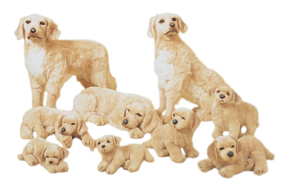 Plush Golden Retrievers Realistic Stuffed Animals Piutrè