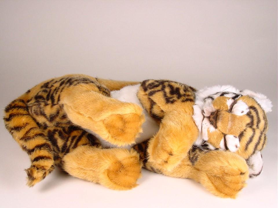 Bengal Tiger Cub 2525 - Wild Animals