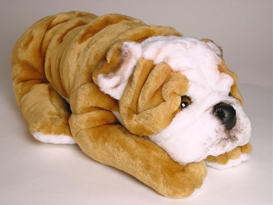 Bulldog Puppy 3287 Dogs