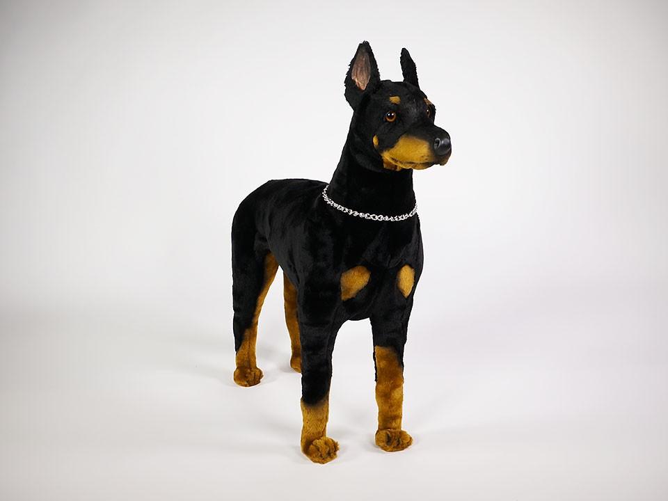 Doberman Pinscher Reduced Size 0272 Doberman Pinschers Dogs