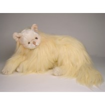 Angora Cat 2335 by Piutrè