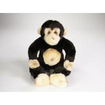 Baby Orangutan 2648 by Piutrè