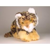 Bengal Tiger Cub 0402 by Piutrè
