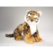Bengal Tiger Cub 2515 by Piutrè