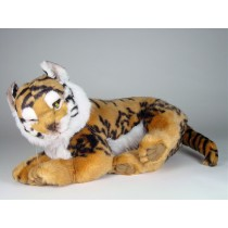Bengal Tiger Cub 2516 by Piutrè