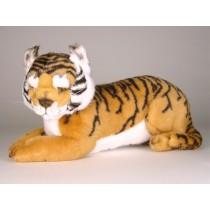 Bengal Tiger Cub 2517 by Piutrè