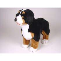 Bernese Mountain Dog Puppy 1263 by Piutrè