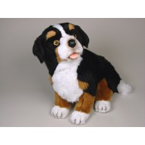 Bernese Mountain Dog Puppy 1264 by Piutrè