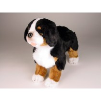 Bernese Mountain Dog Puppy 3326 by Piutrè