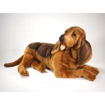 Bloodhound 2266 by Piutrè