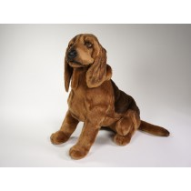 Bloodhound 2267 by Piutrè
