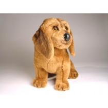 Bloodhound Puppy 3219 by Piutrè