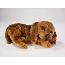 Bloodhound Puppy 3220 by Piutrè