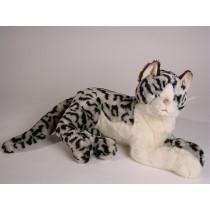 British Shorthair Cat 2336 by Piutrè