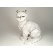 British Shorthair Cat 2460 by Piutrè