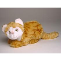British Shorthair Kitten 2341 by Piutrè