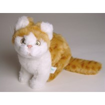 British Shorthair Kitten 2342 by Piutrè