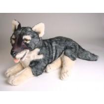 Caspian Sea Wolf Cub 1243 by Piutrè