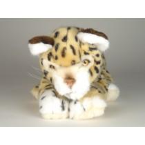 Cheetah Cub 0405 by Piutrè