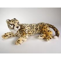 Cheetah Cub 2582 by Piutrè