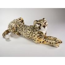 Cheetah Cub 2583 by Piutrè