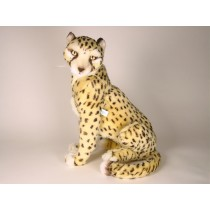 Cheetah Cub 2584 by Piutrè