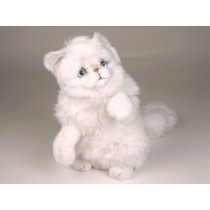 Chinchilla Silver Persian Kitten 2304 by Piutrè
