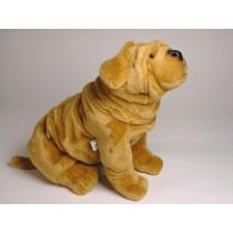 Chinese Shar-Pei Puppy 2298 by Piutrè