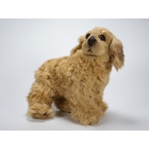 Cocker Spaniel Puppy 1360 by Piutrè