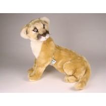 Cougar Cub 2589 by Piutrè