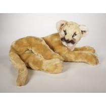 Cougar Cub 2590 by Piutrè
