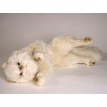 Cream Persian Cat 0317 by Piutrè