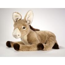 Donkey Foal 2666 by Piutrè