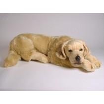 Golden Retriever Puppy 2205 by Piutrè