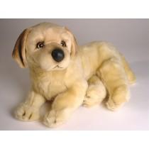 Golden Retriever Puppy 2206 by Piutrè