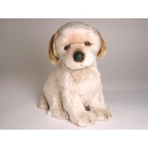 Golden Retriever Puppy 3282 by Piutrè