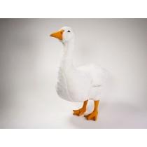 Goose 0722 by Piutrè