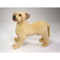 Great Dane Puppy 3304 by Piutrè