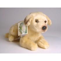 Great Dane Puppy 3307 by Piutrè