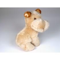 Hippopotamus (Mascot) 4241 by Piutrè