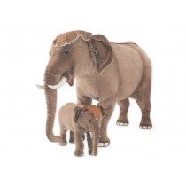 Indian Elephant Calf 2575 by Piutrè