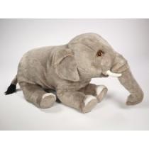 Indian Elephant Calf 2576 by Piutrè