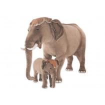 Indian Elephant 2574 by Piutrè