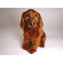 Irish Setter Puppy 3224 by Piutrè