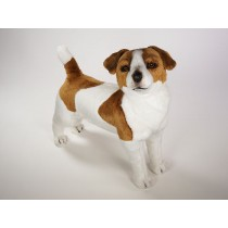 Jack Russell Terrier by Piutrè