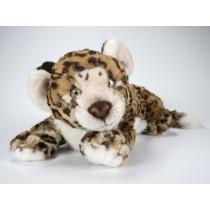 Jaguar Cub 0507 by Piutrè