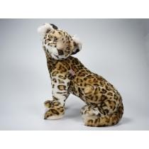 Leopard Cub 2586 by Piutrè