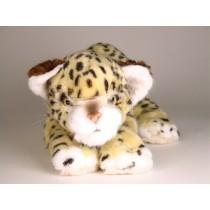 Leopard Cub 2592 by Piutrè