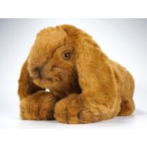 Lop-Eared Rabbit 0634 by Piutrè