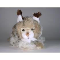 Lynx Cub 0401 by Piutrè